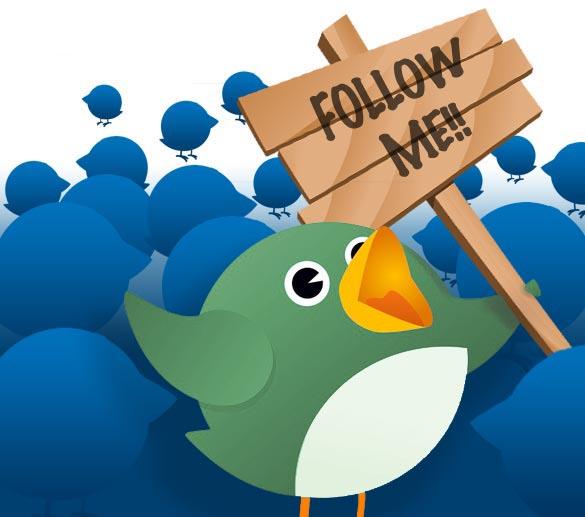 Twitter Blue Birds Followers Grapics